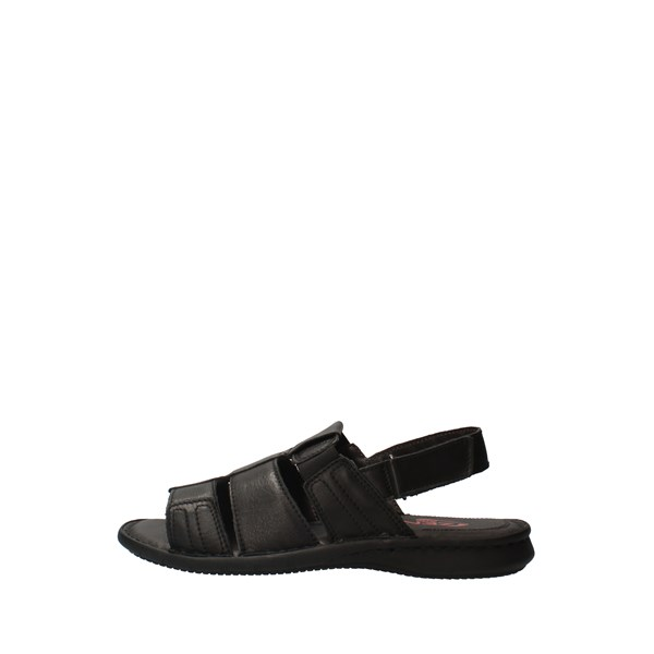 ZEN Shoes Men Netherlands Black 076758
