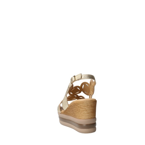 IGI&CO Shoes Women With wedge Platinum 71790